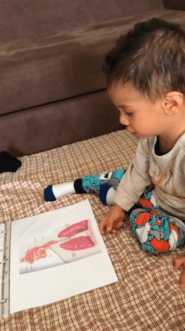 Diego reading anatomy bits