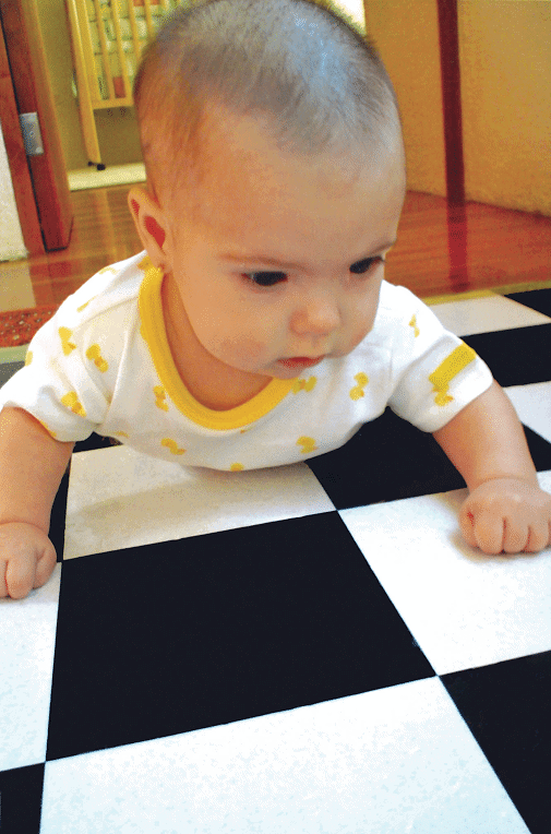 smarter babies and baby geniuses